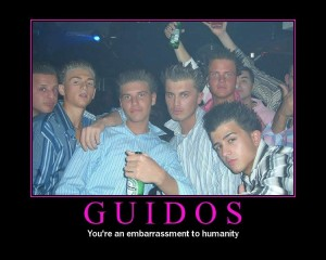 84136d1214438231-i-got-t-v-s-put-my-headerests-guidos