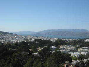 De Young View from Tower